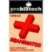 Стимулятор ProBioTech Reanimator